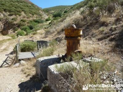 Pinar de Canencia y Mina de Plata del Indiano;puerto de la cruz verde;las caras de buendia